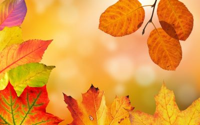 7 Easy Ways To Make Your Home Ready For Autumn